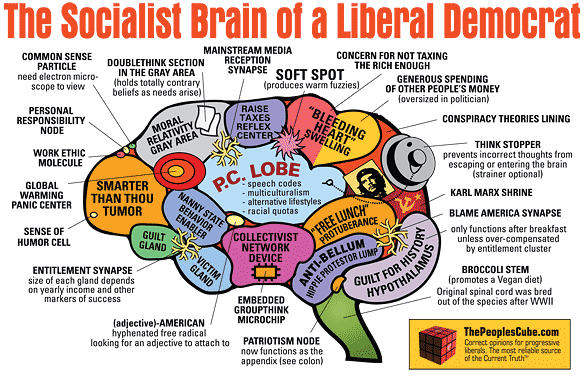 socialist_brain_of_a_liberal_democrat2